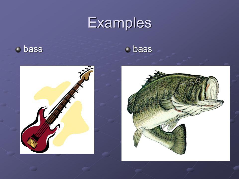 Examples bassbass