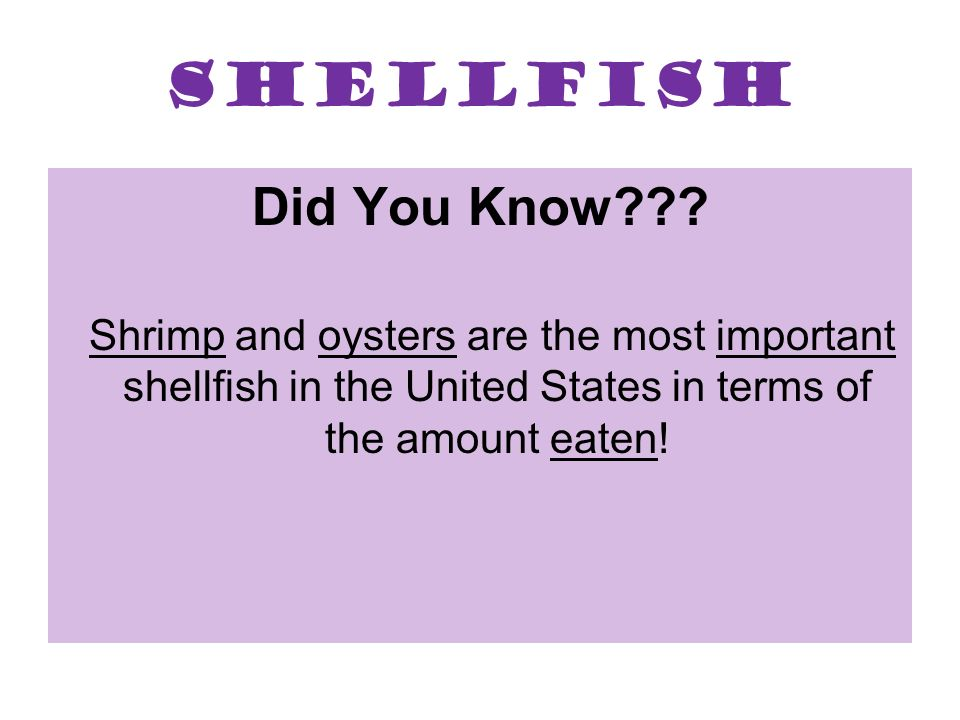 Shellfish Did You Know??? Shrimp and oysters are the most important shellfish in the United States in terms of the amount eaten!