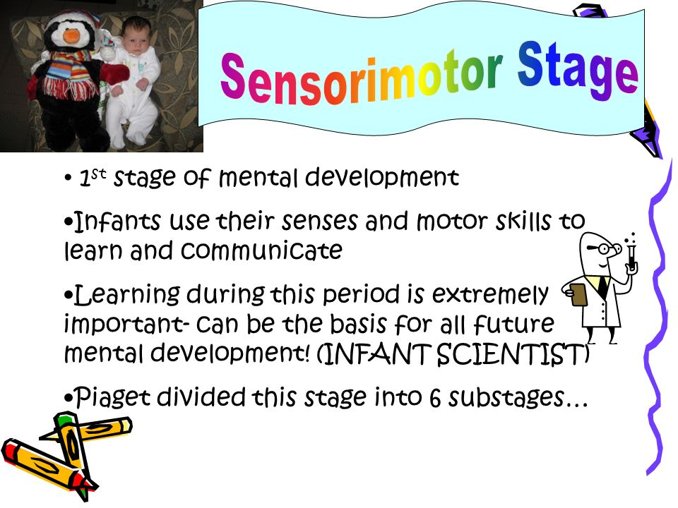 1 st stage of mental development Infants use their senses and motor skills to learn and communicate Learning during this period is extremely important