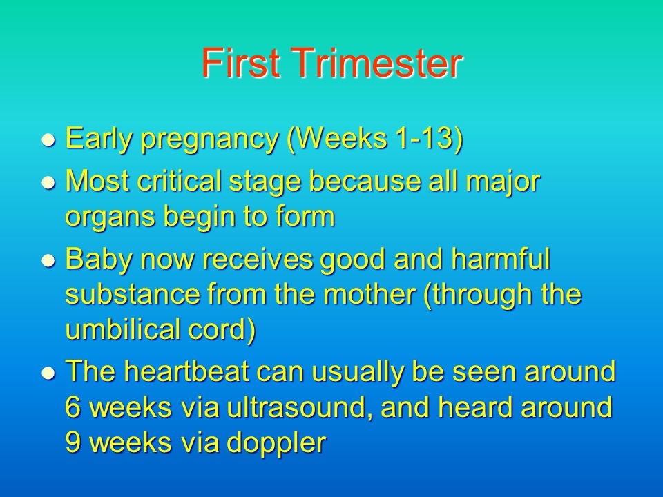 First Trimester Early pregnancy (Weeks 1-13) Early pregnancy (Weeks 1-13) Most critical stage because all major organs begin to form Most critical sta