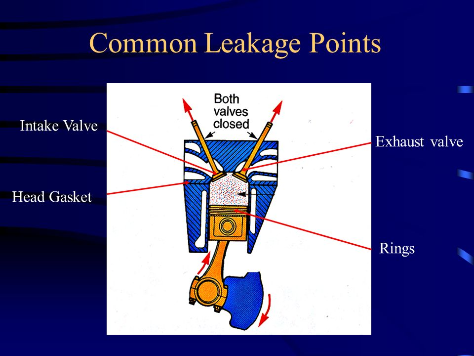 Common Leakage Points Intake Valve Head Gasket Exhaust valve Rings