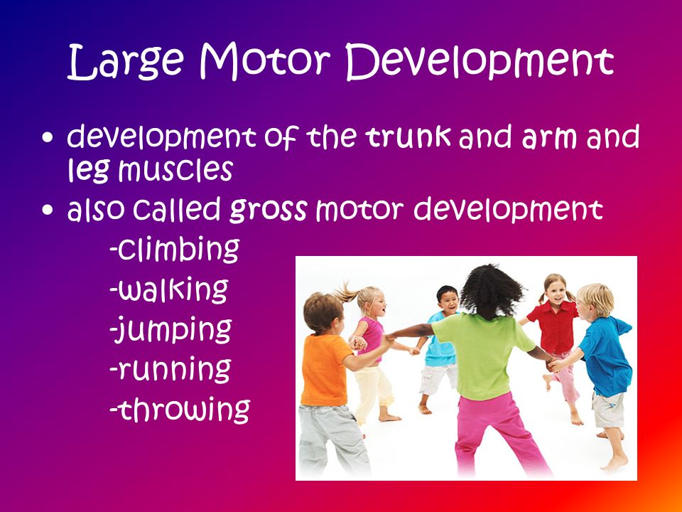 Large Motor Development development of the trunk and arm and leg muscles also called gross motor development -climbing -walking -jumping -running -thr