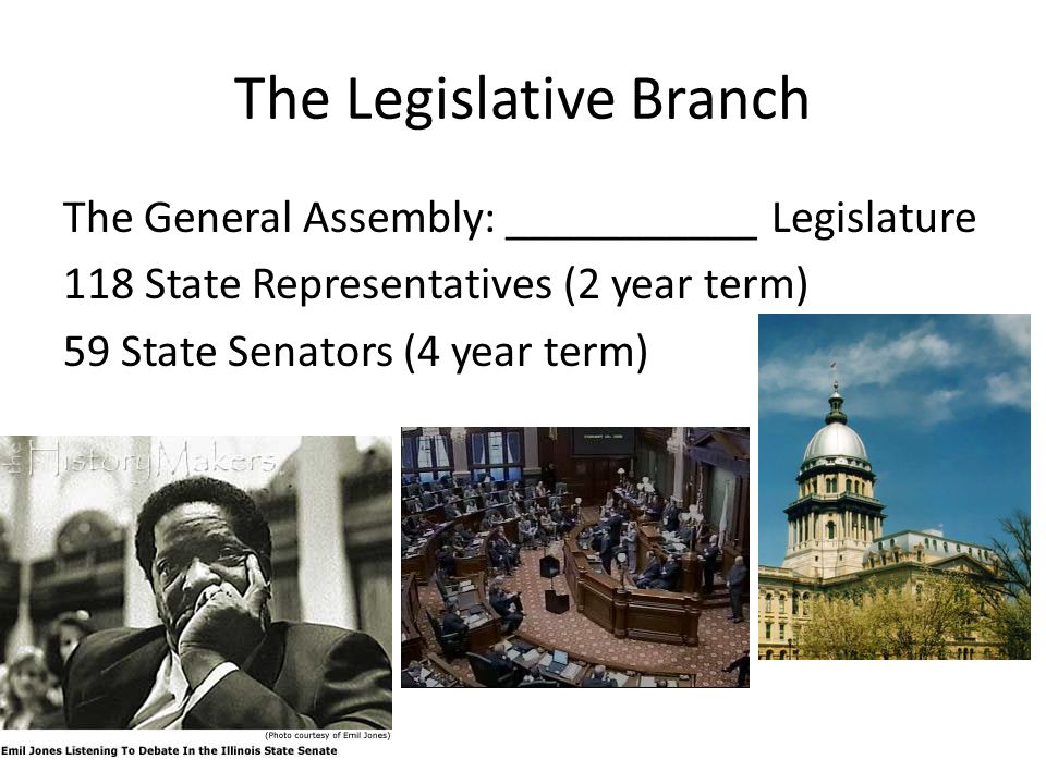 The Legislative Branch The General Assembly: ___________ Legislature 118 State Representatives (2 year term) 59 State Senators (4 year term)