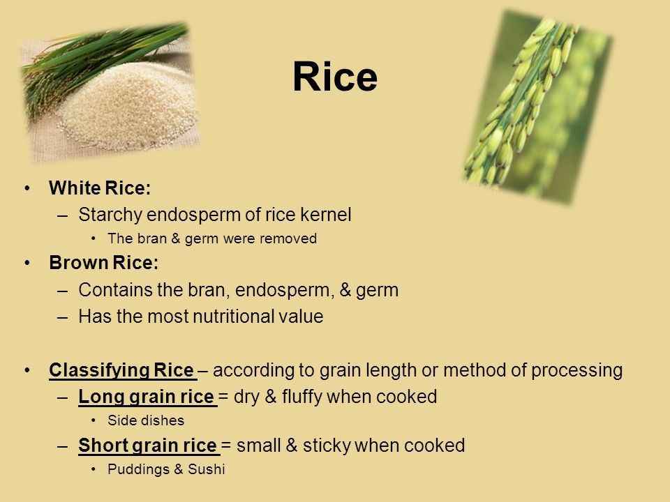 Rice White Rice: –Starchy endosperm of rice kernel The bran & germ were removed Brown Rice: –Contains the bran, endosperm, & germ –Has the most nutrit