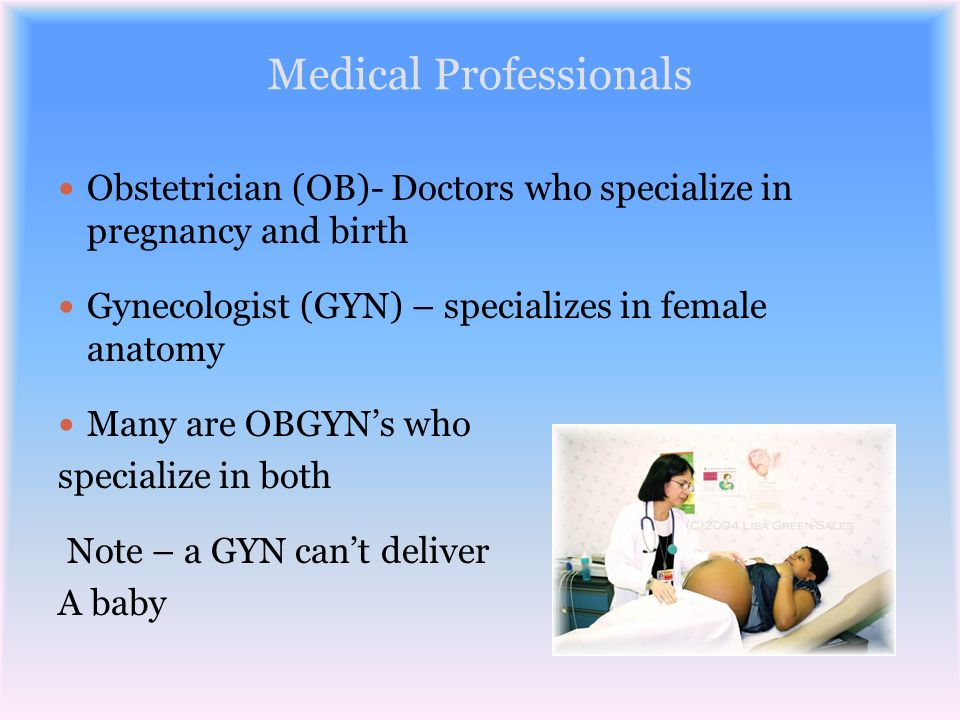 Medical Professionals Obstetrician (OB)- Doctors who specialize in pregnancy and birth Gynecologist (GYN) – specializes in female anatomy Many are OBG