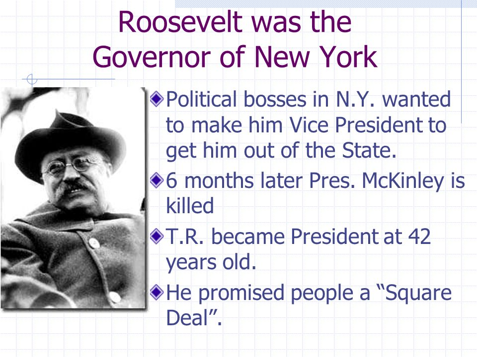 Theodore Roosevelts Progressivism Chapter 17 Sec 3