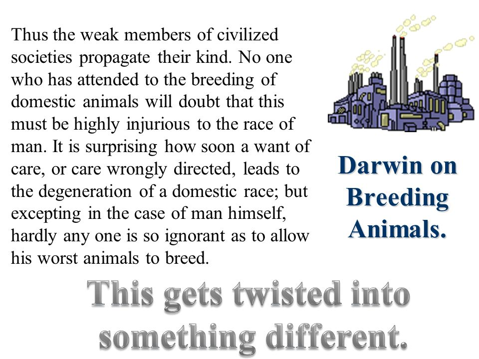 Social Darwinism A perversion of Charles Darwins On the Origin of Species His ideas were applied to business.