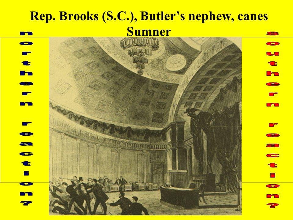 Rep. Brooks (S.C.), Butlers nephew, canes Sumner
