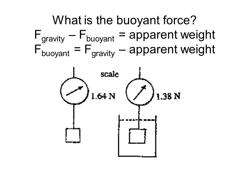 What is the buoyant force? F gravity – F buoyant = apparent weight F buoyant = F gravity – apparent weight