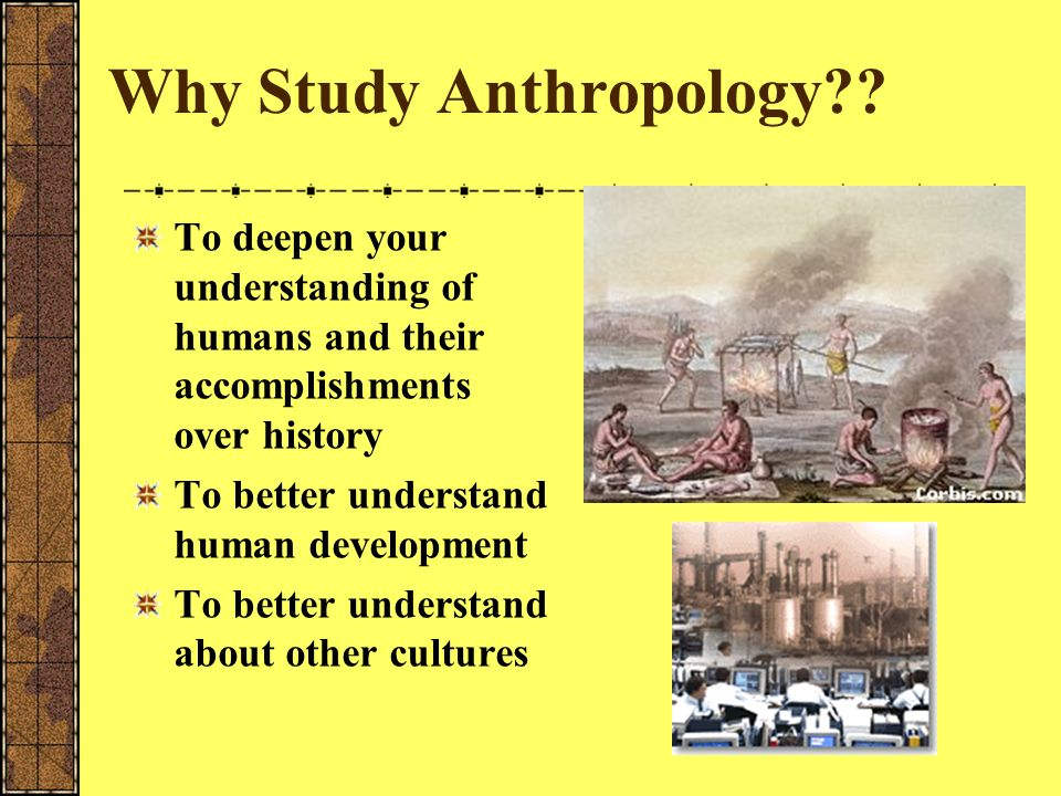 Methods of Anthropological Research Participant Observation-When one lives among a culture, tries to become one of them- does not study the culture fr