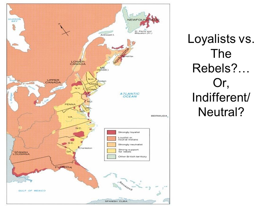 Loyalists vs. The Rebels … Or, Indifferent/ Neutral