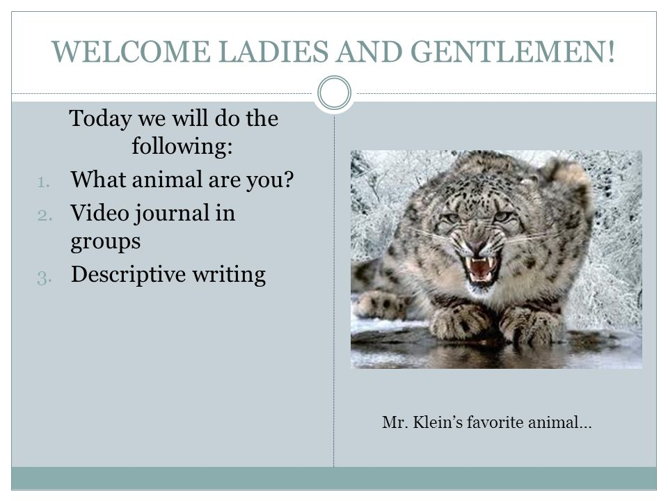 WELCOME LADIES AND GENTLEMEN! Today we will do the following: 1. What animal are you? 2. Video journal in groups 3. Descriptive writing Mr. Kleins fav