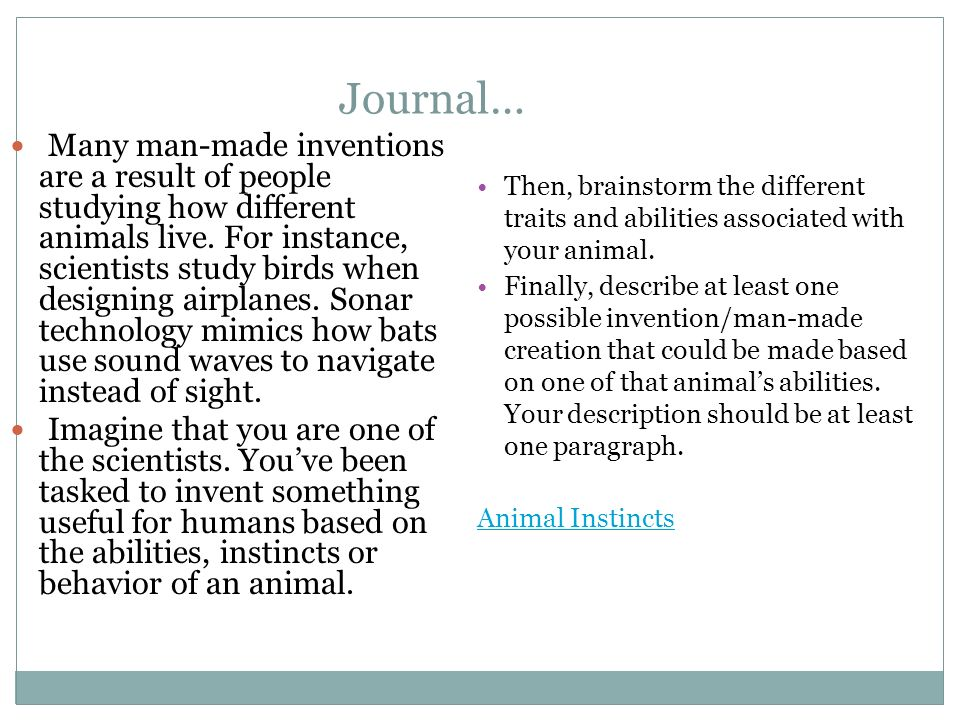 Journal… Many man-made inventions are a result of people studying how different animals live.