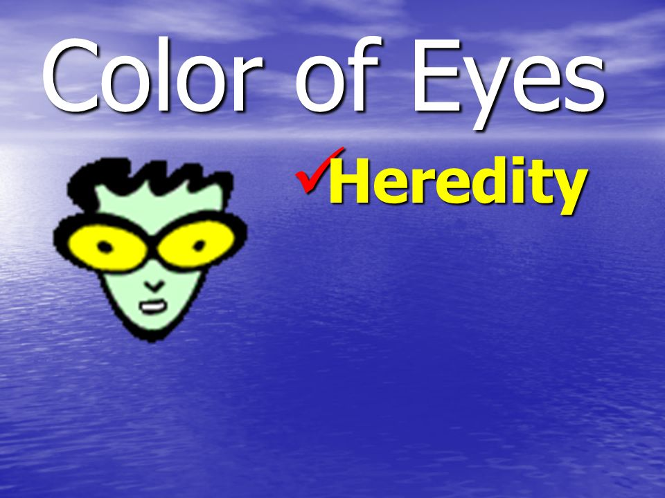 Color of Eyes Heredity Heredity