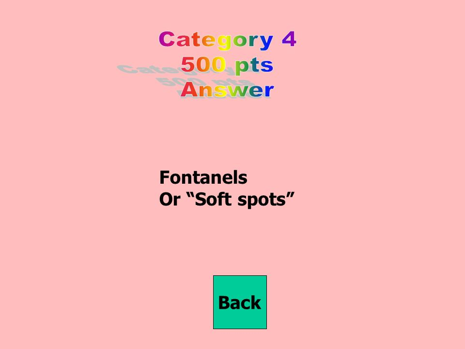 Fontanels Or Soft spots Back