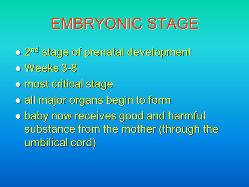 EMBRYONIC STAGE 2 nd stage of prenatal development 2 nd stage of prenatal development Weeks 3-8 Weeks 3-8 most critical stage most critical stage all