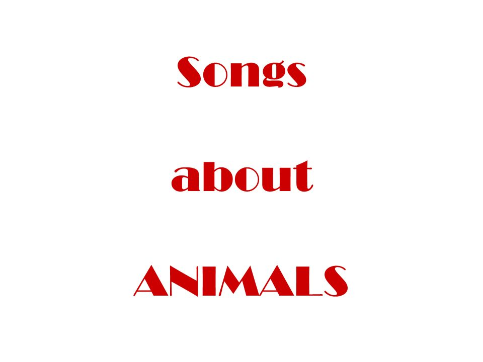Songs about ANIMALS