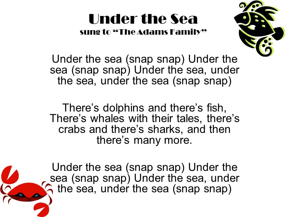 Under the Sea sung to The Adams Family Under the sea (snap snap) Under the sea (snap snap) Under the sea, under the sea, under the sea (snap snap) Theres dolphins and theres fish, Theres whales with their tales, theres crabs and theres sharks, and then theres many more.