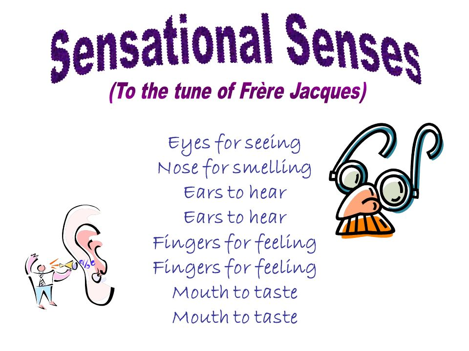 Eyes for seeing Nose for smelling Ears to hear Fingers for feeling Mouth to taste
