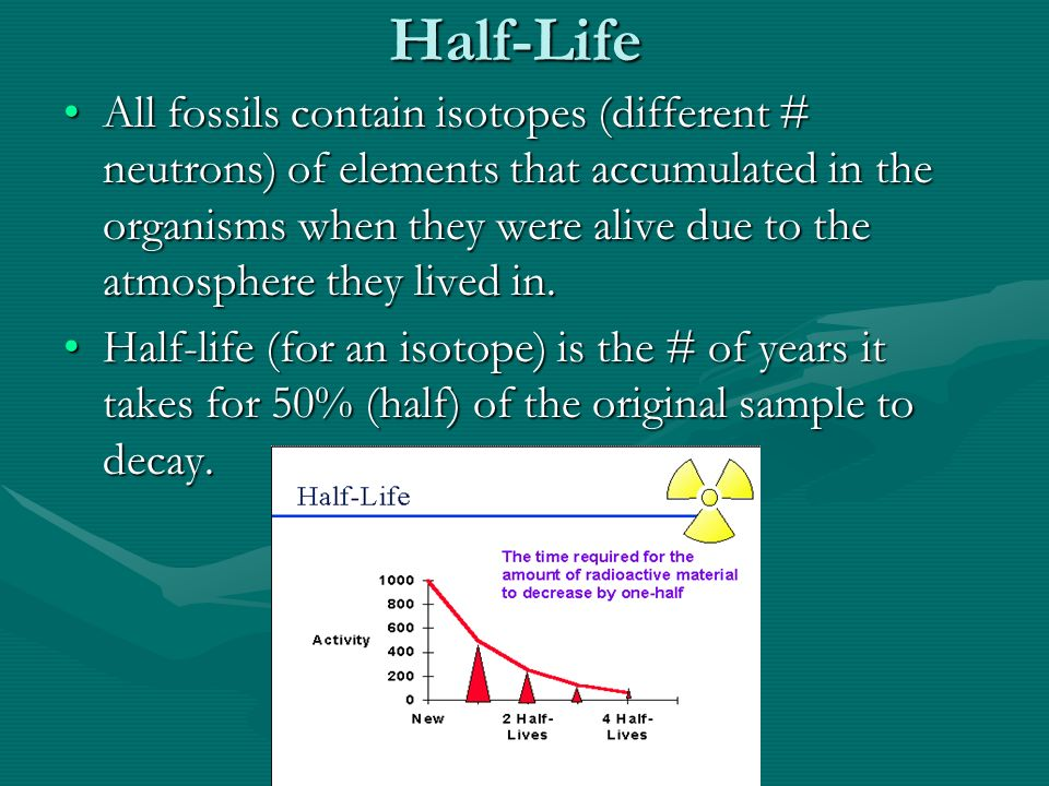 Half-Life All fossils contain isotopes (different # neutrons) of elements that accumulated in the organisms when they were alive due to the atmosphere