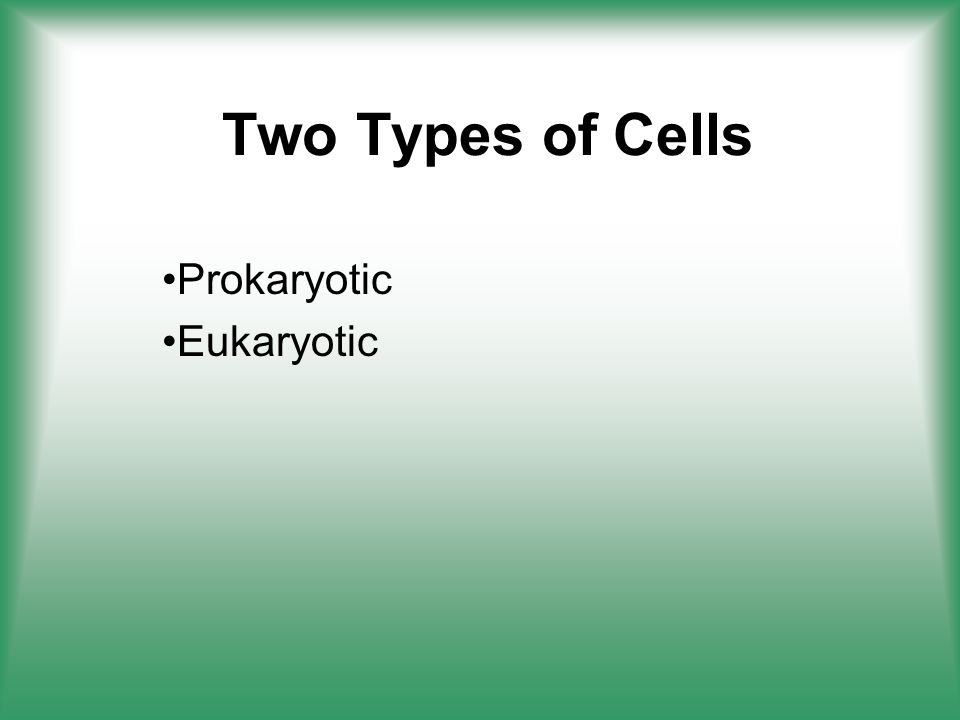 Two Types of Cells Prokaryotic Eukaryotic