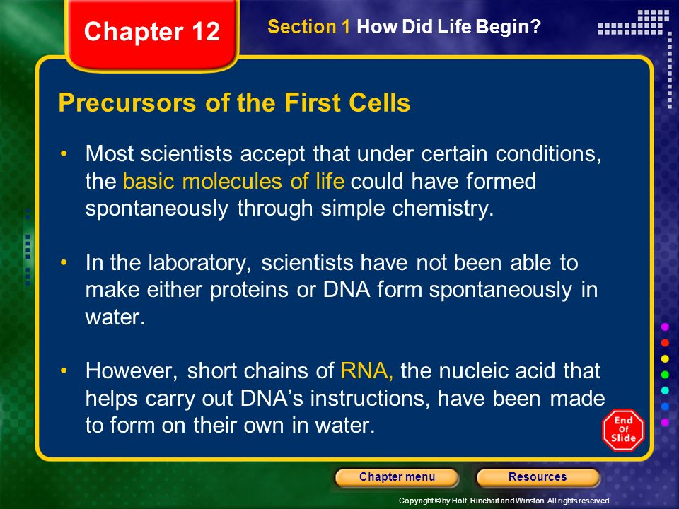 Copyright © by Holt, Rinehart and Winston. All rights reserved. ResourcesChapter menu Precursors of the First Cells Most scientists accept that under
