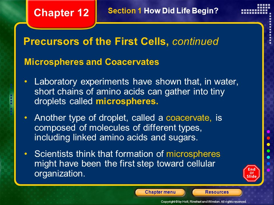 Copyright © by Holt, Rinehart and Winston. All rights reserved. ResourcesChapter menu Precursors of the First Cells, continued Microspheres and Coacer