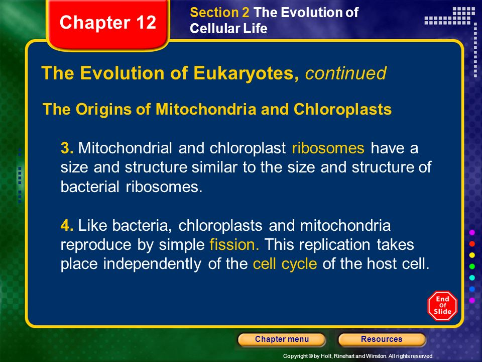 Copyright © by Holt, Rinehart and Winston. All rights reserved. ResourcesChapter menu The Evolution of Eukaryotes, continued The Origins of Mitochondr