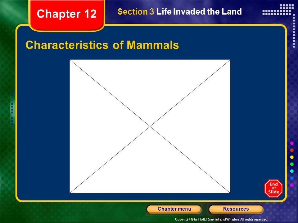 Copyright © by Holt, Rinehart and Winston. All rights reserved. ResourcesChapter menu Characteristics of Mammals Section 3 Life Invaded the Land Chapt