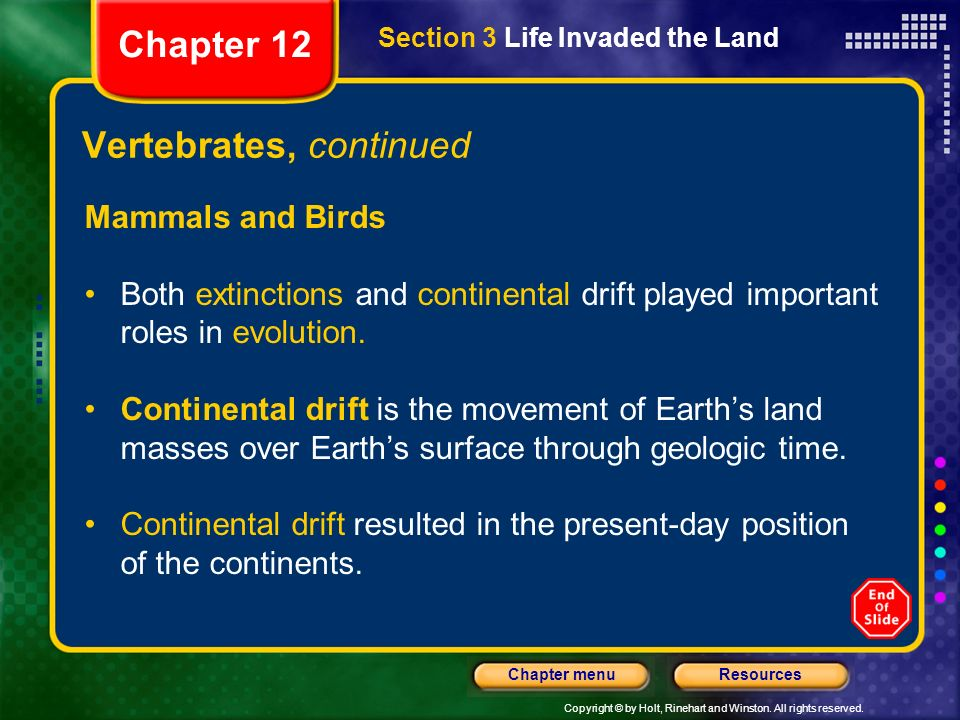 Copyright © by Holt, Rinehart and Winston. All rights reserved. ResourcesChapter menu Vertebrates, continued Mammals and Birds Both extinctions and co