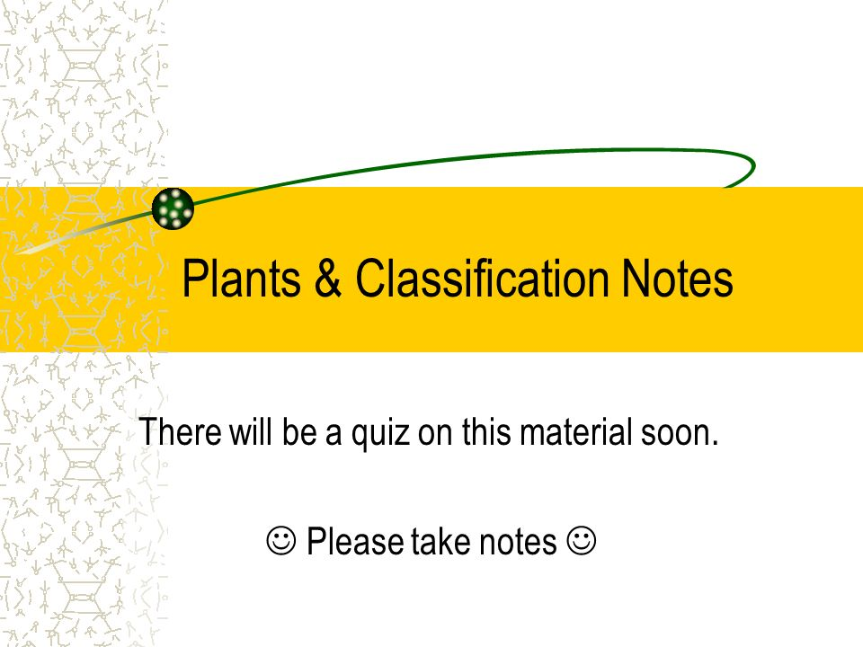 Plants & Classification Notes There will be a quiz on this material soon. Please take notes