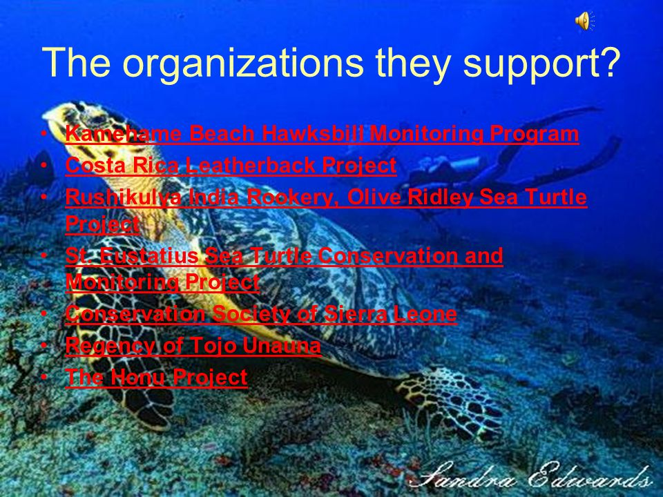 The organizations they support.