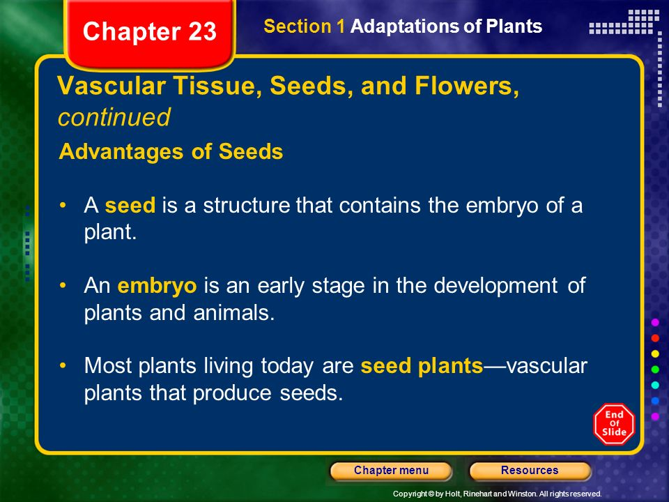 Copyright © by Holt, Rinehart and Winston. All rights reserved. ResourcesChapter menu Vascular Tissue, Seeds, and Flowers, continued Advantages of See