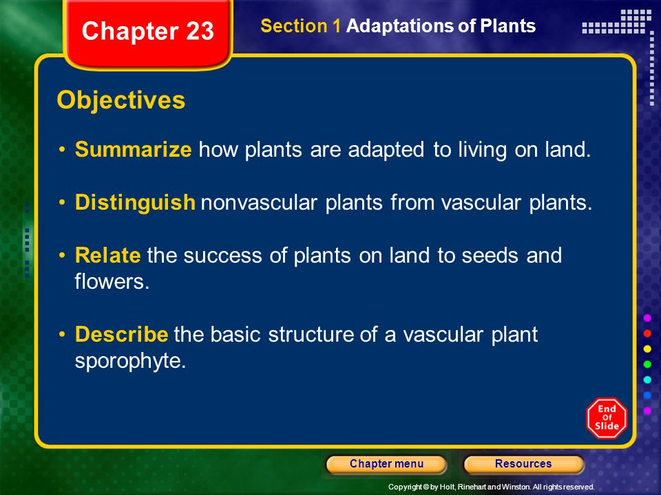 Copyright © by Holt, Rinehart and Winston. All rights reserved. ResourcesChapter menu Section 1 Adaptations of Plants Objectives Summarize how plants