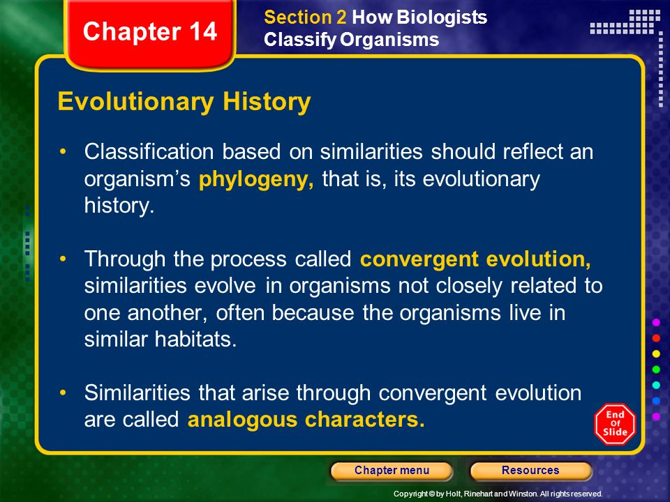 Copyright © by Holt, Rinehart and Winston. All rights reserved. ResourcesChapter menu Evolutionary History Classification based on similarities should