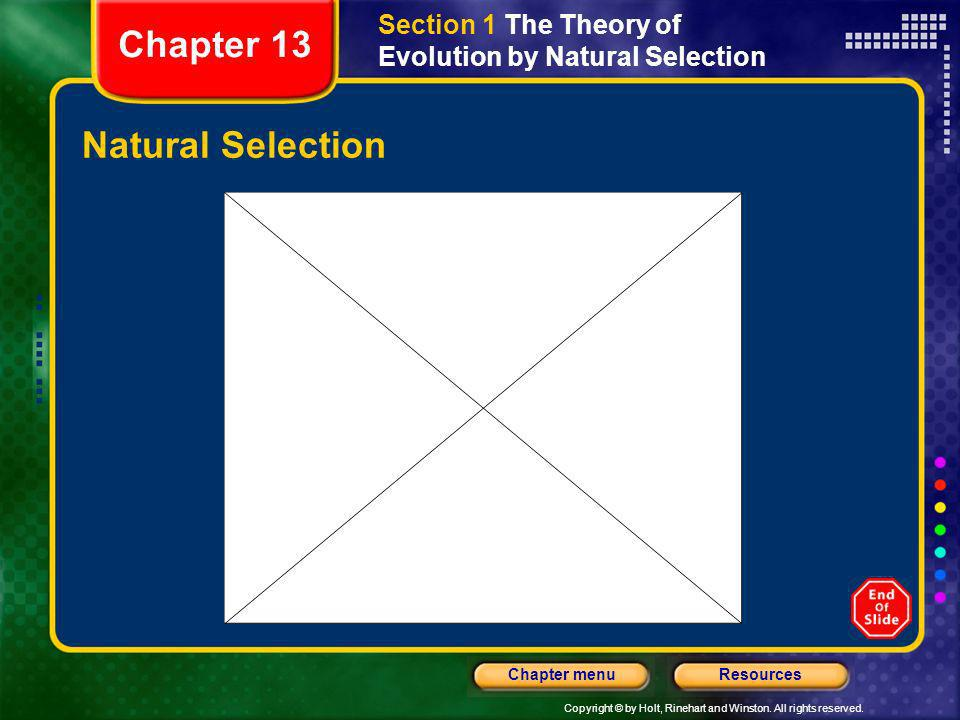 Copyright © by Holt, Rinehart and Winston. All rights reserved. ResourcesChapter menu Natural Selection Section 1 The Theory of Evolution by Natural S