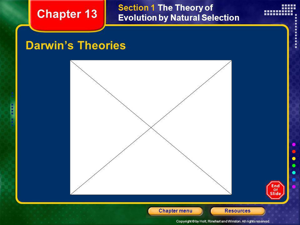 Copyright © by Holt, Rinehart and Winston. All rights reserved. ResourcesChapter menu Darwins Theories Section 1 The Theory of Evolution by Natural Se