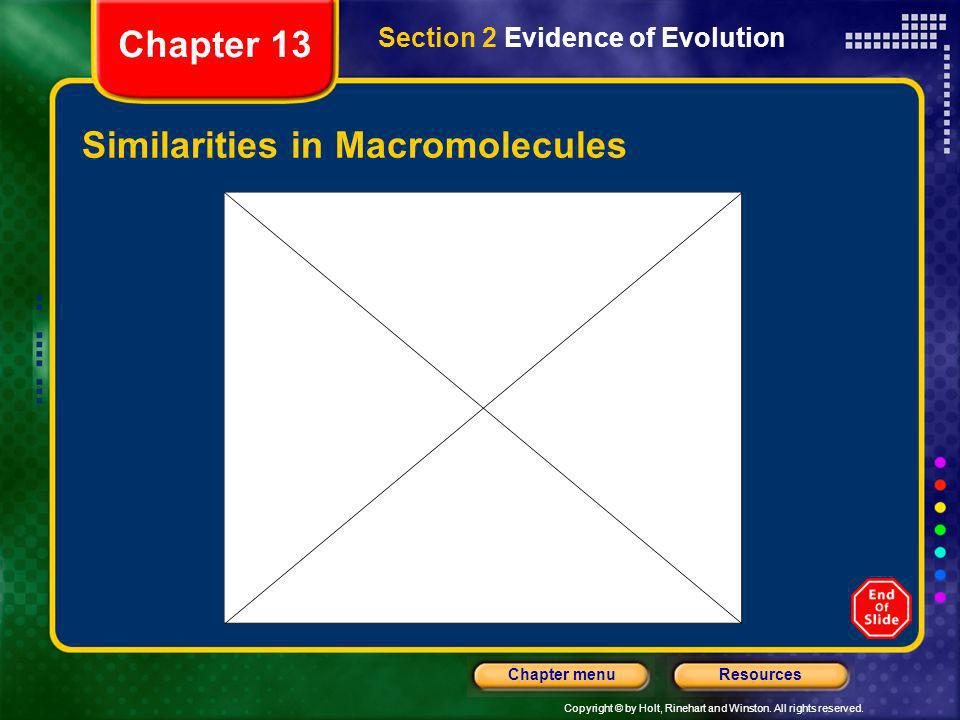 Copyright © by Holt, Rinehart and Winston. All rights reserved. ResourcesChapter menu Similarities in Macromolecules Section 2 Evidence of Evolution C