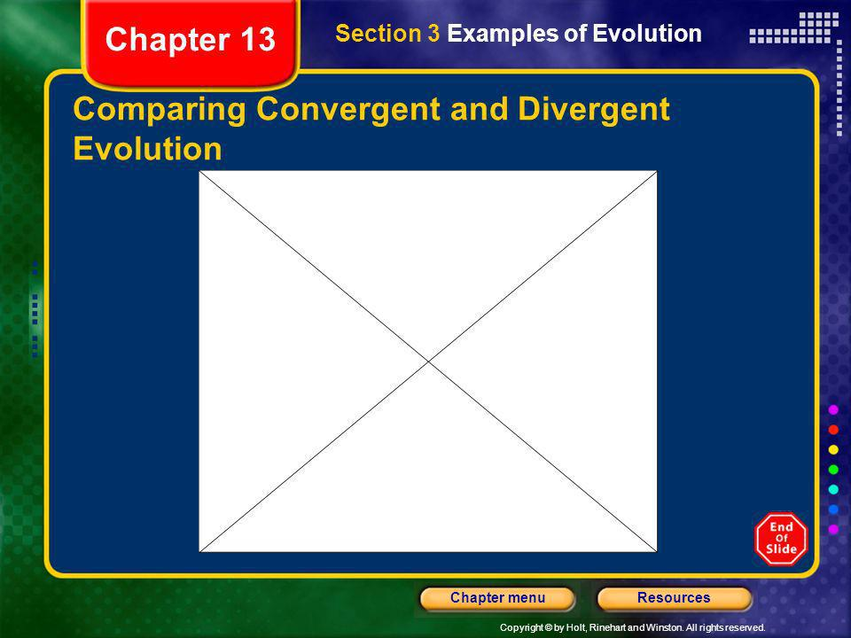 Copyright © by Holt, Rinehart and Winston. All rights reserved. ResourcesChapter menu Comparing Convergent and Divergent Evolution Section 3 Examples