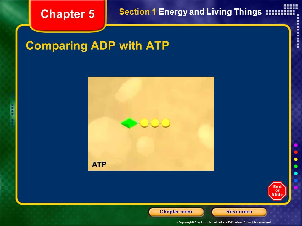 Copyright © by Holt, Rinehart and Winston. All rights reserved. ResourcesChapter menu Comparing ADP with ATP Section 1 Energy and Living Things Chapte