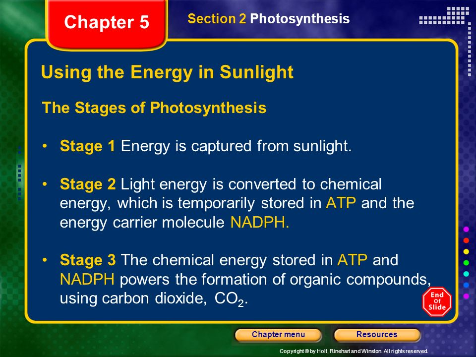 Copyright © by Holt, Rinehart and Winston. All rights reserved. ResourcesChapter menu Using the Energy in Sunlight The Stages of Photosynthesis Stage