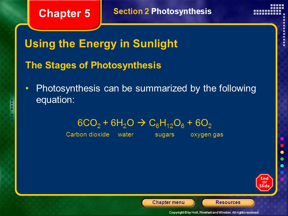 Copyright © by Holt, Rinehart and Winston. All rights reserved. ResourcesChapter menu Using the Energy in Sunlight The Stages of Photosynthesis Photos