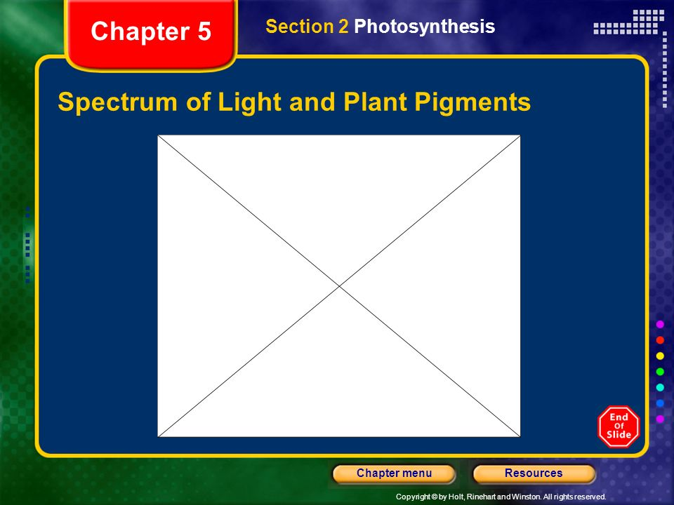 Copyright © by Holt, Rinehart and Winston. All rights reserved. ResourcesChapter menu Spectrum of Light and Plant Pigments Section 2 Photosynthesis Ch