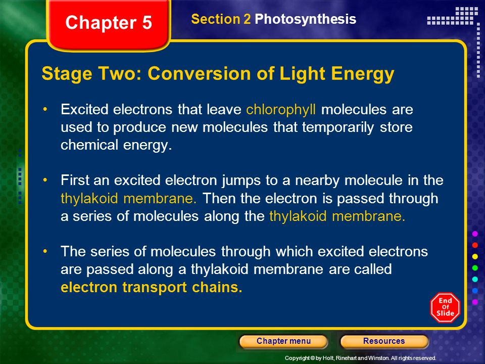 Copyright © by Holt, Rinehart and Winston. All rights reserved. ResourcesChapter menu Stage Two: Conversion of Light Energy Excited electrons that lea