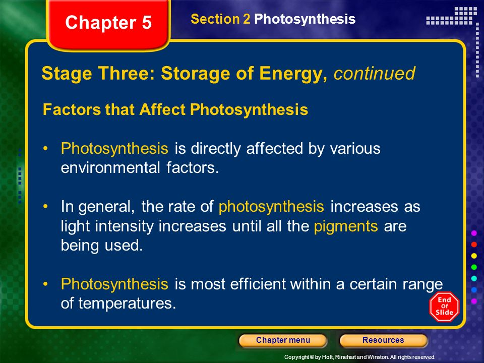 Copyright © by Holt, Rinehart and Winston. All rights reserved. ResourcesChapter menu Stage Three: Storage of Energy, continued Factors that Affect Ph