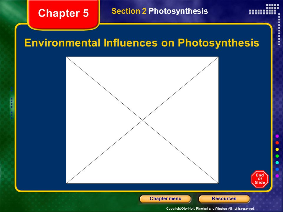 Copyright © by Holt, Rinehart and Winston. All rights reserved. ResourcesChapter menu Environmental Influences on Photosynthesis Section 2 Photosynthe