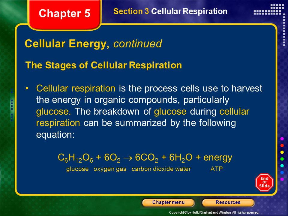 Copyright © by Holt, Rinehart and Winston. All rights reserved. ResourcesChapter menu Cellular Energy, continued The Stages of Cellular Respiration Ce