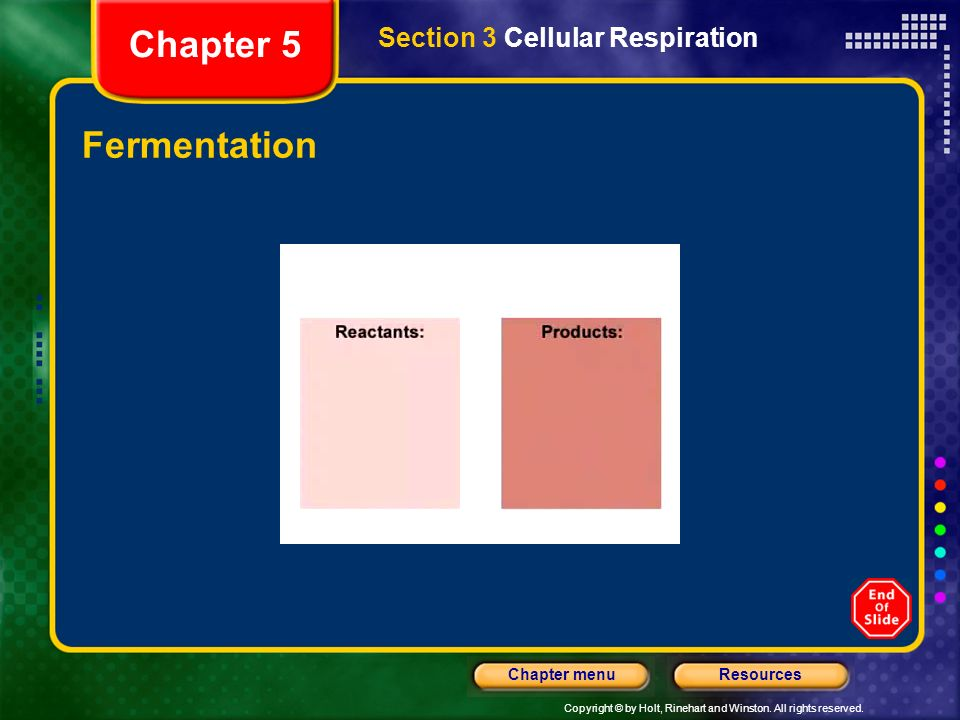 Copyright © by Holt, Rinehart and Winston. All rights reserved. ResourcesChapter menu Fermentation Section 3 Cellular Respiration Chapter 5