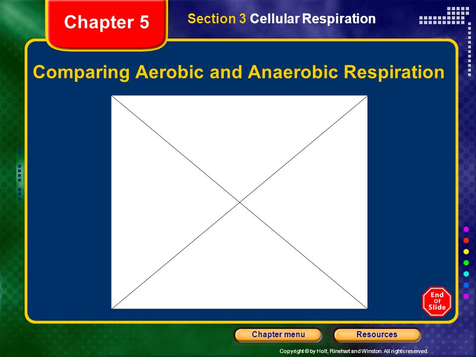 Copyright © by Holt, Rinehart and Winston. All rights reserved. ResourcesChapter menu Comparing Aerobic and Anaerobic Respiration Section 3 Cellular R