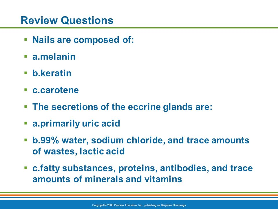 Copyright © 2009 Pearson Education, Inc., publishing as Benjamin Cummings Review Questions Nails are composed of: a.melanin b.keratin c.carotene The secretions of the eccrine glands are: a.primarily uric acid b.99% water, sodium chloride, and trace amounts of wastes, lactic acid c.fatty substances, proteins, antibodies, and trace amounts of minerals and vitamins